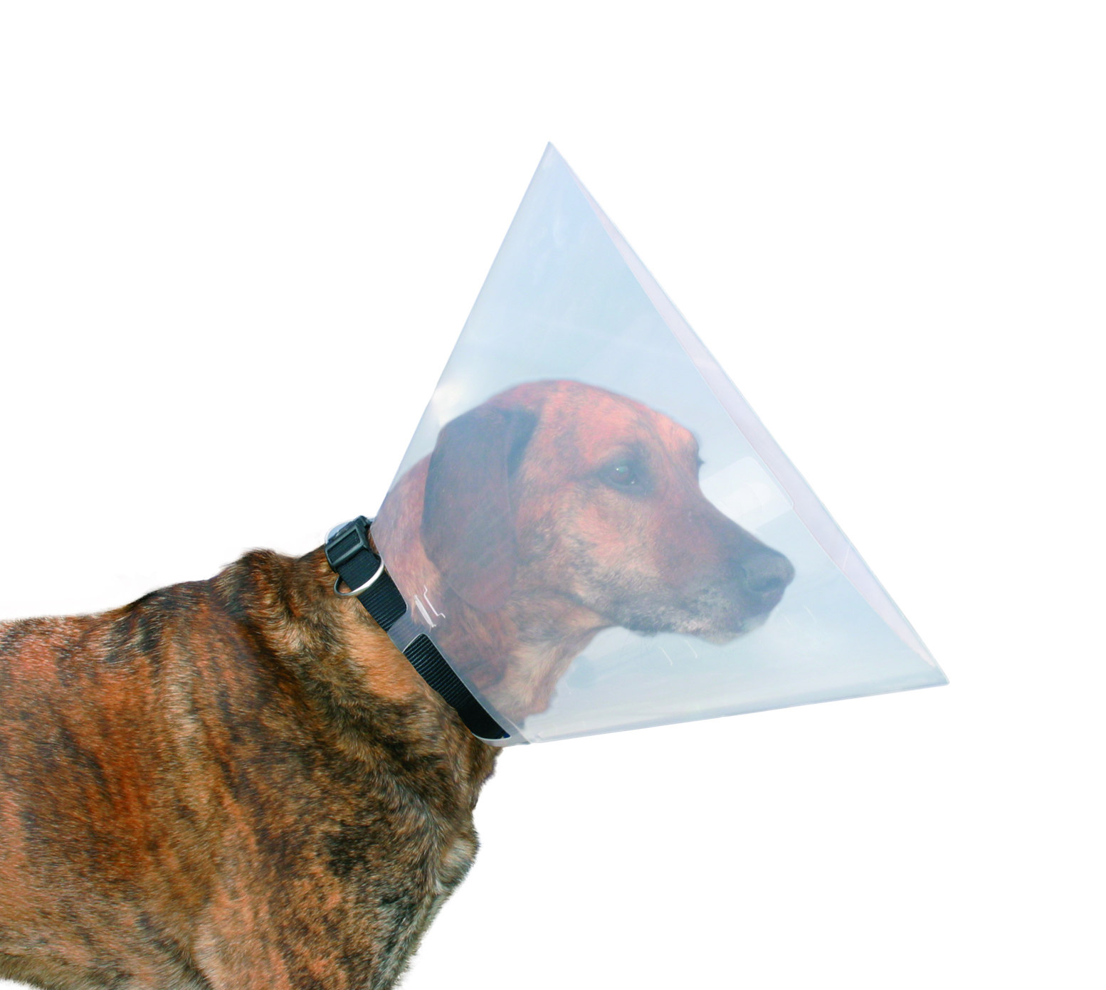 Trixie Protective E-Collar With Clip - Ofypets