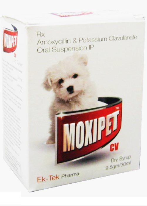 Ektek Pharma Moxipet CV Amoxycillin Oral Suspension Dry Syrup