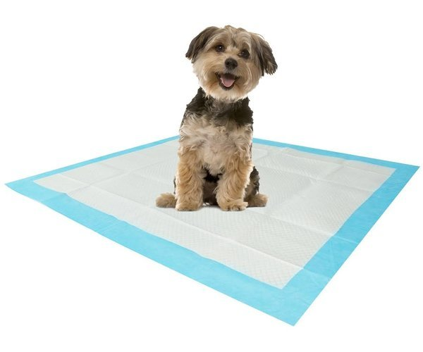 Smartypet Underpad (Large)