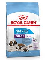 Royal Canin Giant Starter Dog Food