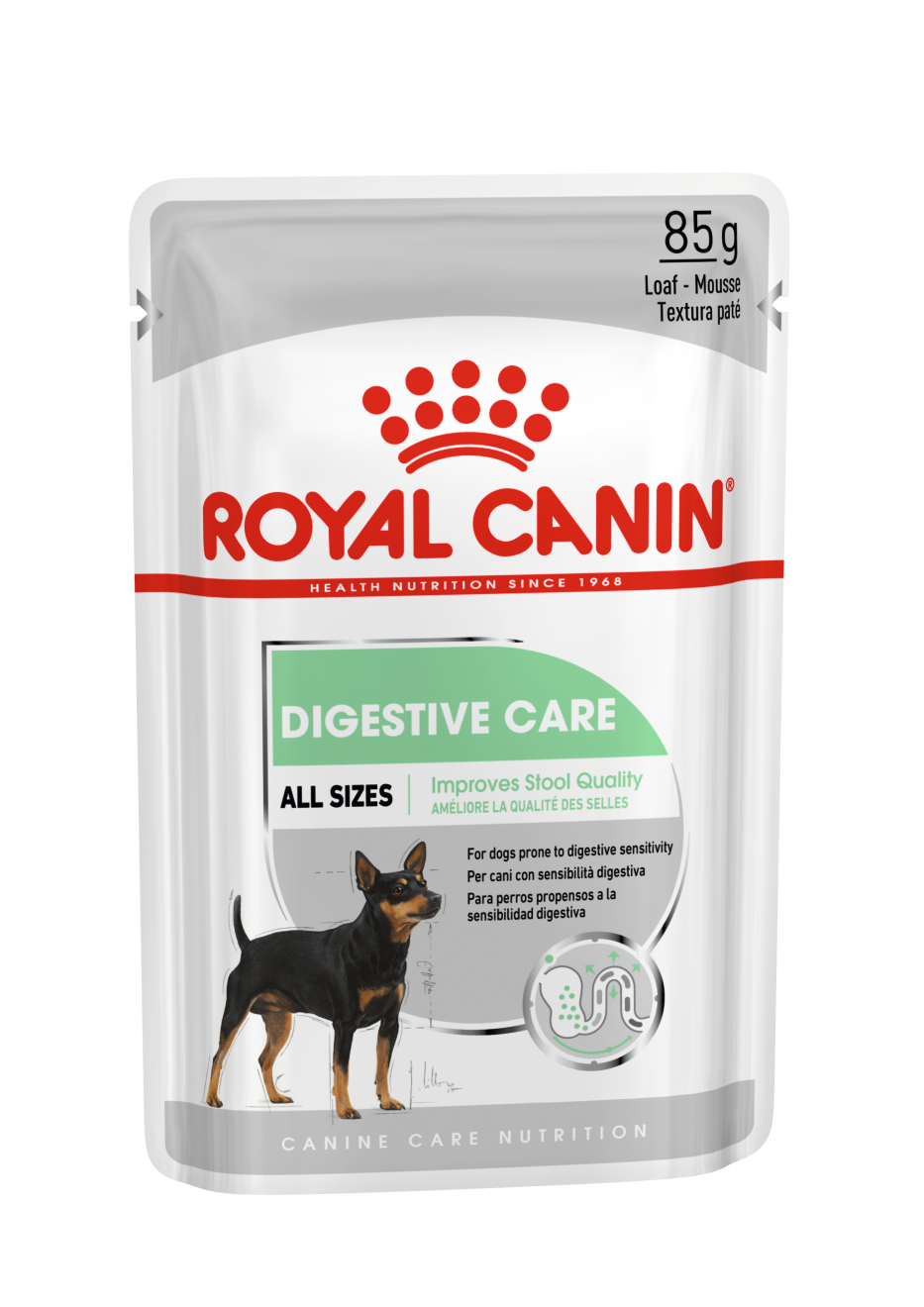 Royal Canin Digestive Care Loaf Dog Food Pouch - Ofypets
