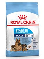 Royal Canin Maxi Starter Dog Food