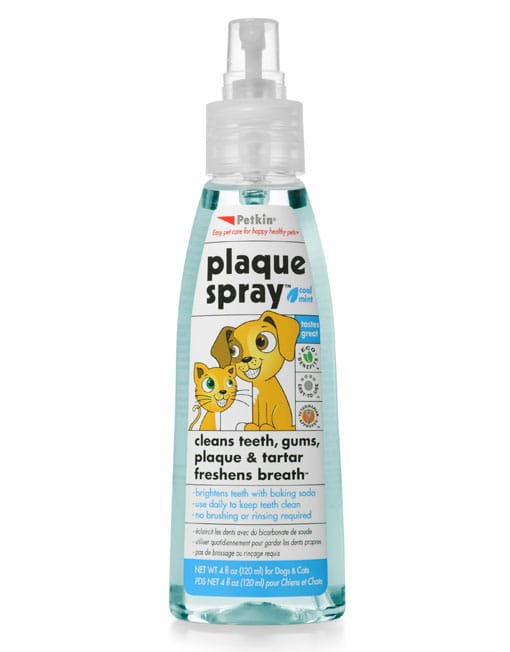 Petkin Plaque Spray,Cool Mint - Ofypets