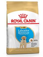 Royal Canin Labrador Puppy Dog Food