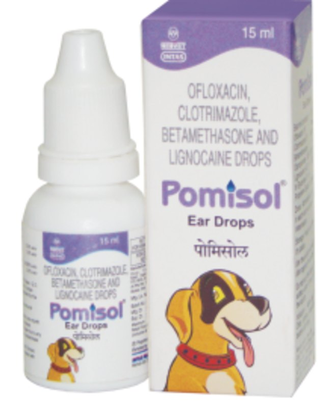 Intas Pomisol Antibiotic Drops for Ear Infections