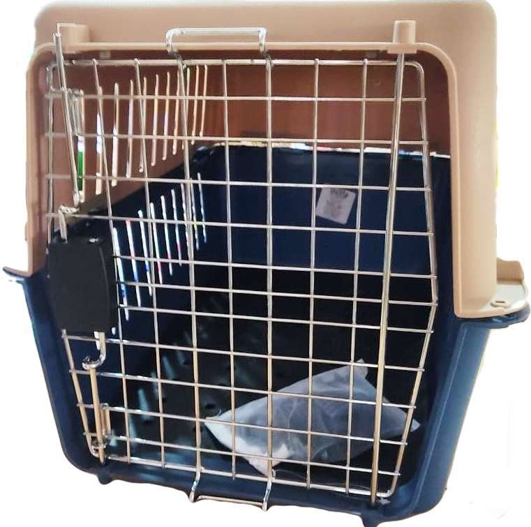 Delite Pet Carrier (Colour May Vary)