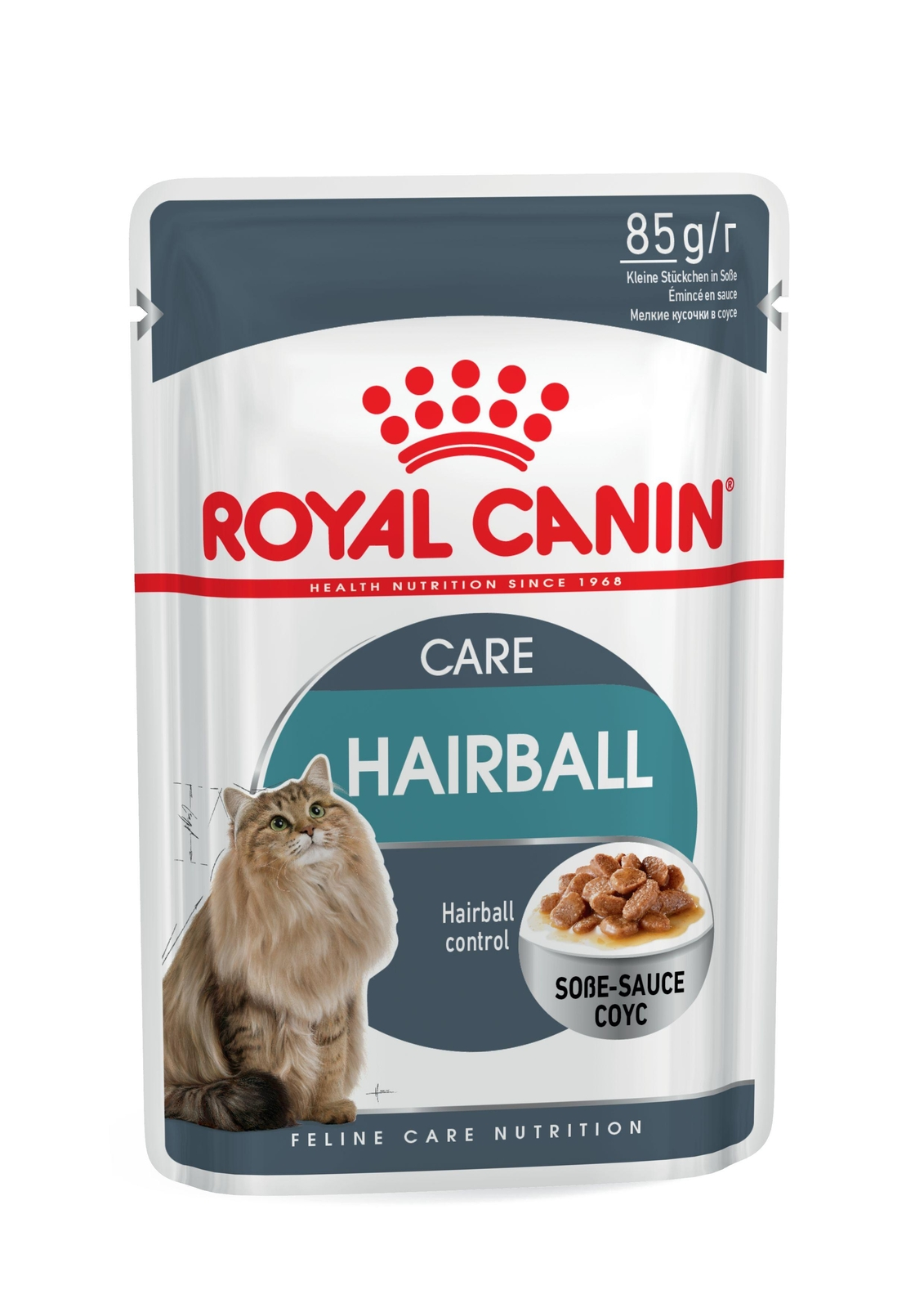 Royal Canin Hairball Care Cat Food Pouch - Ofypets