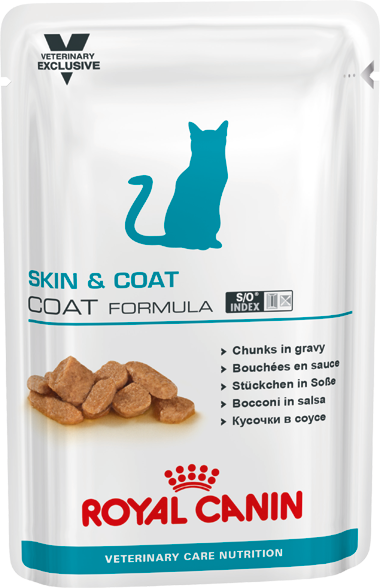 Royal Canin Skin and Coat Wet Cat Food Pouch